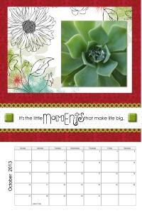 Enchanted Green Succulent October 2013