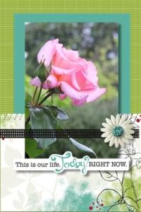Flower card 4