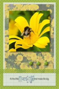 Flower card 6 - Copy