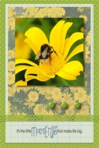 Flower card 6 - Copy