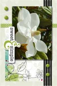 Flower card 8 - Copy