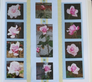 Scrapbook page using 11 photos