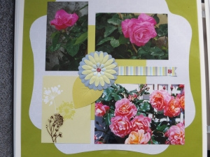 Scrapbook pages of rose