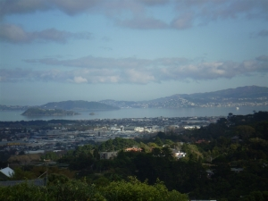 Original image of Wellington Harbour
