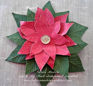 Finished poinsettia flower