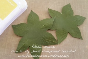 Poinsettia leaves - distressed